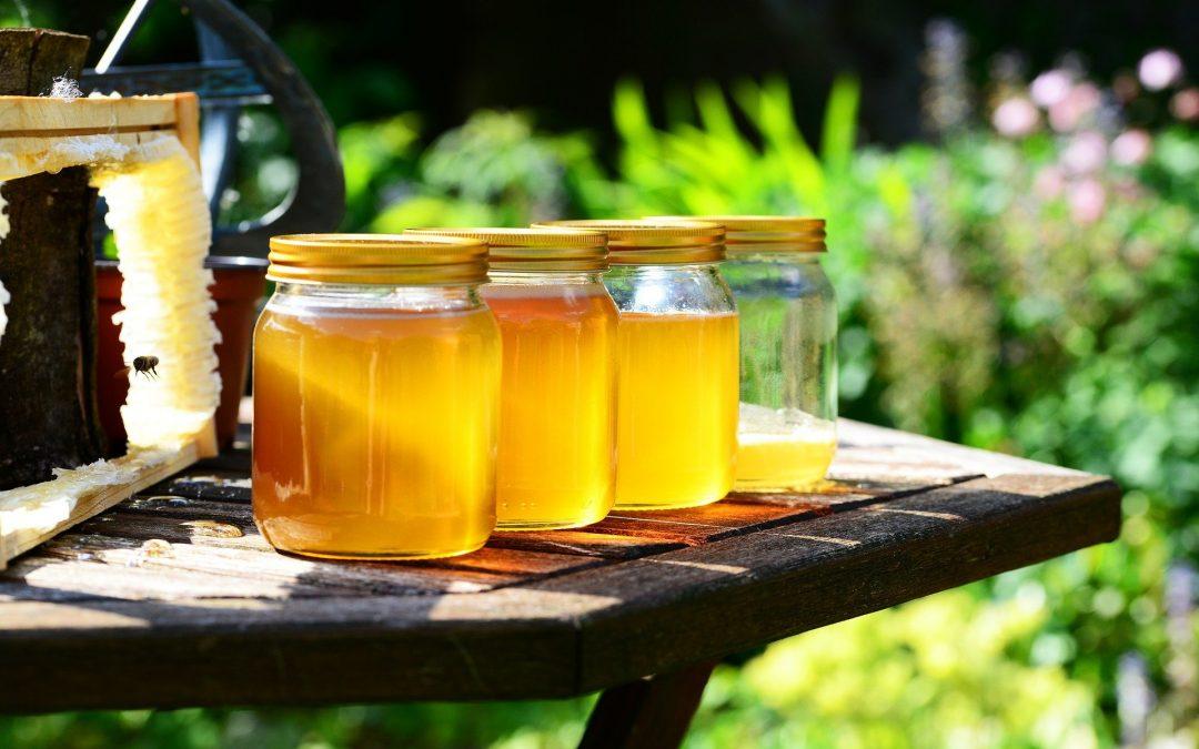 Honigpreise: Welche Honigsorte kosten wie viel?