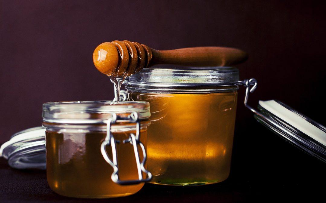 Ablauf der Honigernte